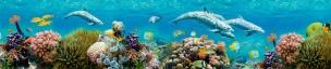 Подводный мир 119