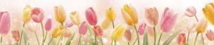 Растения,цветы 010